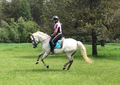 Luna gallop